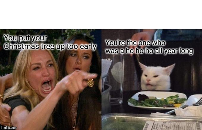 Woman Yelling At Cat | You put your Christmas tree up too early You're the one who was a ho ho ho all year long | image tagged in memes,woman yelling at cat | made w/ Imgflip meme maker
