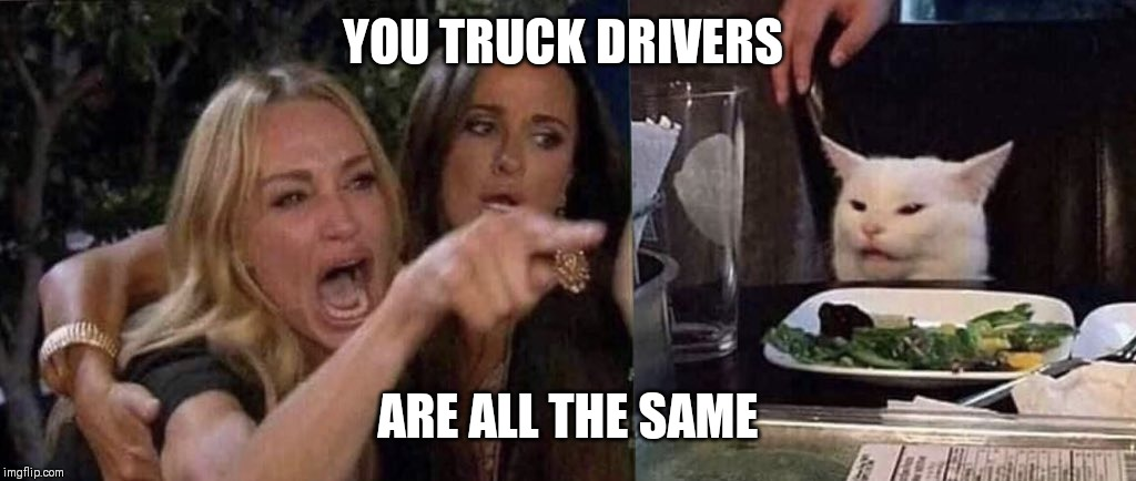 woman yelling at cat | YOU TRUCK DRIVERS ARE ALL THE SAME | image tagged in woman yelling at cat | made w/ Imgflip meme maker