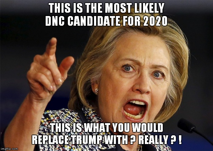 The madness of a panicked crowd is nothing compared to the collective stupidity of libtards. |  THIS IS THE MOST LIKELY DNC CANDIDATE FOR 2020; THIS IS WHAT YOU WOULD REPLACE TRUMP WITH ? REALLY ? ! | image tagged in hillary,idiots | made w/ Imgflip meme maker