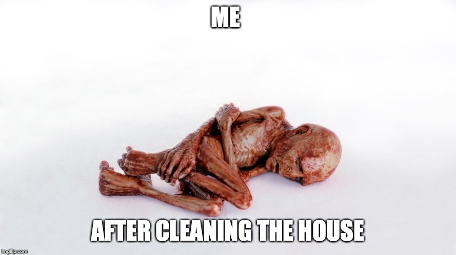 Weak voldemort  | ME AFTER CLEANING THE HOUSE | image tagged in weak voldemort | made w/ Imgflip meme maker