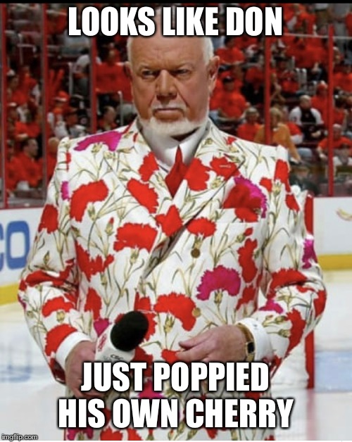 LOOKS LIKE DON JUST POPPIED HIS OWN CHERRY | image tagged in sports,canada,poppy | made w/ Imgflip meme maker