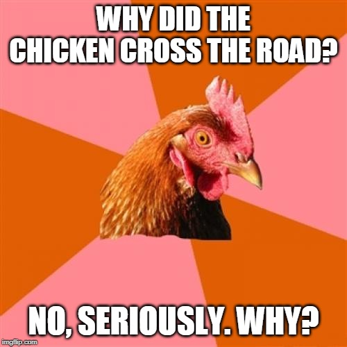 Anti Joke Chicken | WHY DID THE CHICKEN CROSS THE ROAD? NO, SERIOUSLY. WHY? | image tagged in memes,anti joke chicken,anti joke | made w/ Imgflip meme maker