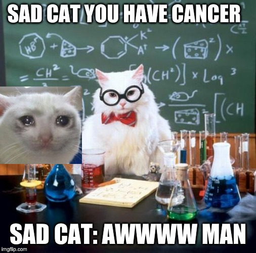 Chemistry Cat | SAD CAT YOU HAVE CANCER SAD CAT: AWWWW MAN | image tagged in memes,chemistry cat | made w/ Imgflip meme maker