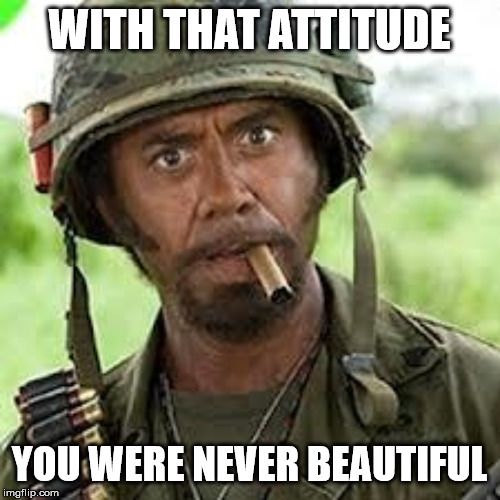 Never go full retard | WITH THAT ATTITUDE YOU WERE NEVER BEAUTIFUL | image tagged in never go full retard | made w/ Imgflip meme maker