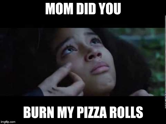 Mom, did you burn my pizza rolls | MOM DID YOU BURN MY PIZZA ROLLS | image tagged in funny memes,lol | made w/ Imgflip meme maker