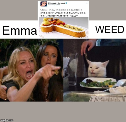 Woman Yelling At Cat | Emma WEED | image tagged in memes,woman yelling at cat | made w/ Imgflip meme maker