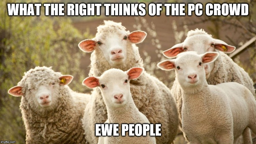 WHAT THE RIGHT THINKS OF THE PC CROWD EWE PEOPLE | image tagged in trudeau | made w/ Imgflip meme maker