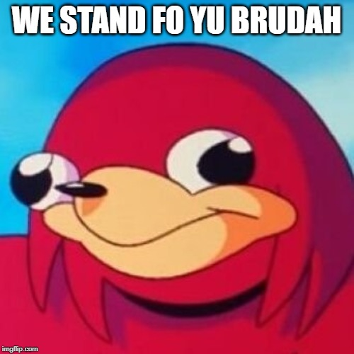 Ugandan Knuckles | WE STAND FO YU BRUDAH | image tagged in ugandan knuckles | made w/ Imgflip meme maker