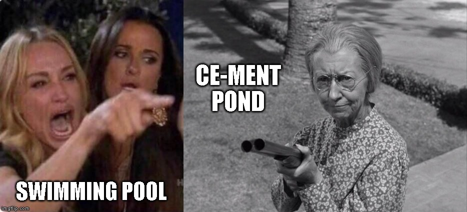 What in tarnation | SWIMMING POOL CE-MENT POND | image tagged in the clampetts,beverly hillbillies,woman yelling | made w/ Imgflip meme maker