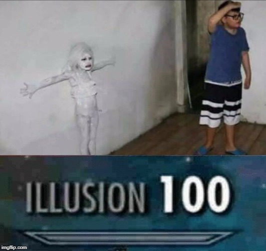 IMPOSSIBLE hide! | image tagged in illusion 100,funny,hide and seek,white,girl,hide | made w/ Imgflip meme maker