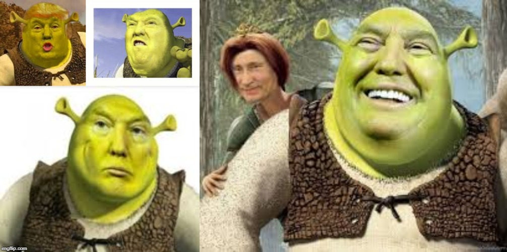 image tagged in shrek,donald trump,trump | made w/ Imgflip meme maker