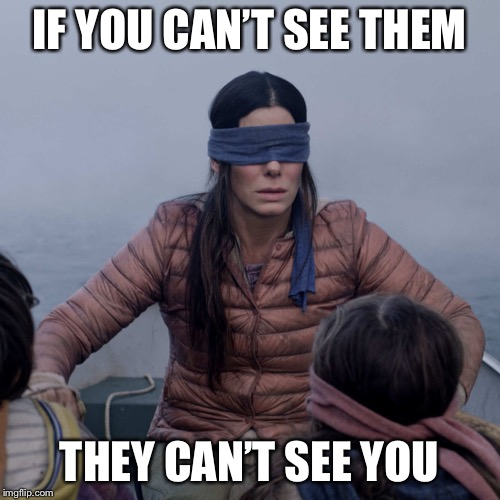Bird Box |  IF YOU CAN'T SEE THEM; THEY CAN'T SEE YOU | image tagged in memes,bird box | made w/ Imgflip meme maker