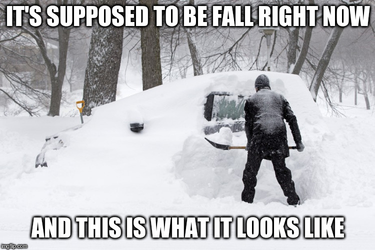Fall is dead, winter is here | IT'S SUPPOSED TO BE FALL RIGHT NOW AND THIS IS WHAT IT LOOKS LIKE | image tagged in november,snow,winter is here,fall,memes | made w/ Imgflip meme maker