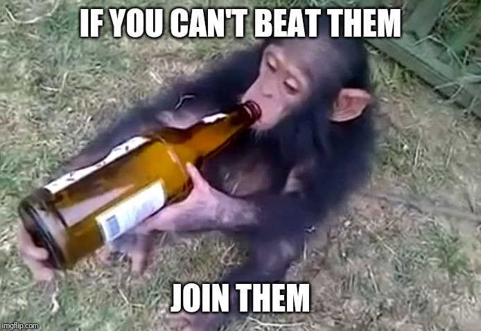 Monkey on booze | IF YOU CAN'T BEAT THEM JOIN THEM | image tagged in monkey on booze | made w/ Imgflip meme maker