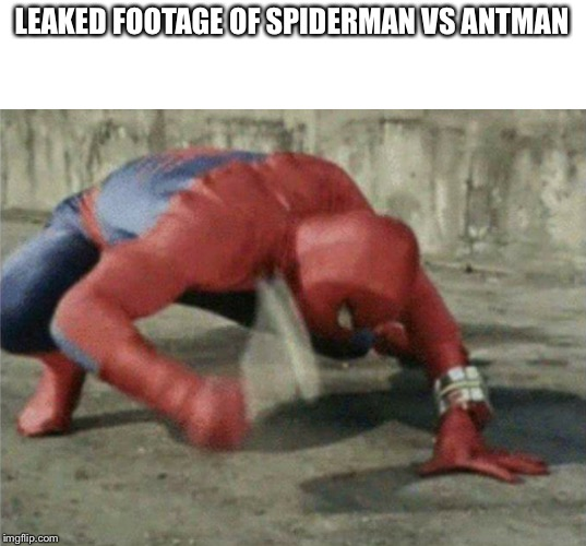 The Ultimate Fight | LEAKED FOOTAGE OF SPIDERMAN VS ANTMAN | image tagged in spiderman wrench,antman,marvel | made w/ Imgflip meme maker