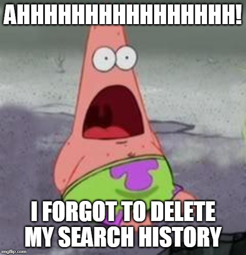 Suprised Patrick | AHHHHHHHHHHHHHHHH! I FORGOT TO DELETE MY SEARCH HISTORY | image tagged in suprised patrick | made w/ Imgflip meme maker