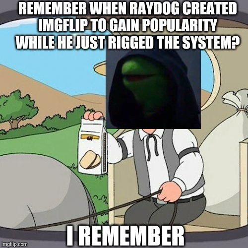 This did happen... |  REMEMBER WHEN RAYDOG CREATED IMGFLIP TO GAIN POPULARITY WHILE HE JUST RIGGED THE SYSTEM? I REMEMBER | image tagged in memes,true,kermit the frog,kermit,dank kermit,not false | made w/ Imgflip meme maker