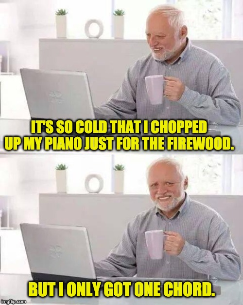 Hide the Pain Harold Meme | IT'S SO COLD THAT I CHOPPED UP MY PIANO JUST FOR THE FIREWOOD. BUT I ONLY GOT ONE CHORD. | image tagged in memes,hide the pain harold | made w/ Imgflip meme maker