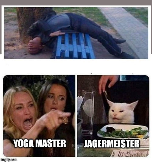 Yoga master |  JAGERMEISTER; YOGA MASTER | image tagged in cat at dinner,jagermeister,yoga master,cat meme | made w/ Imgflip meme maker
