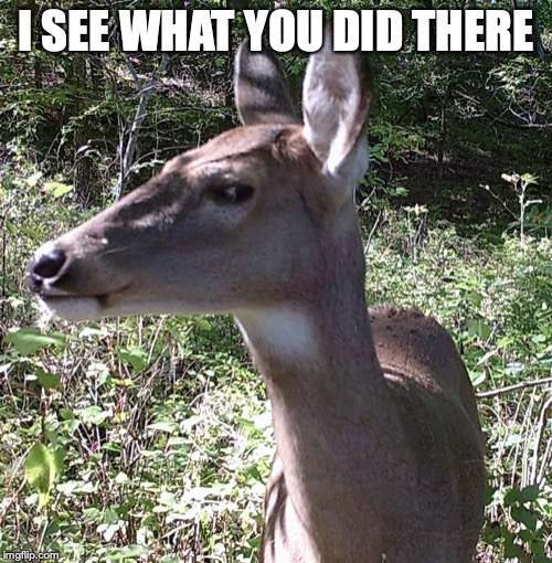 I SEE WHAT YOU DID THERE | image tagged in i see what you did there | made w/ Imgflip meme maker