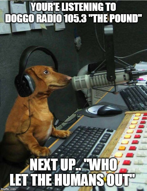 "YOUR'E LISTENING TO DOGGO RADIO 105.3 ""THE POUND"" NEXT UP.. ""WHO LET THE HUMANS OUT"" 