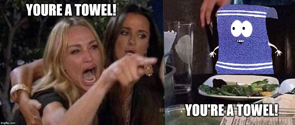 Woman Yelling at Cat vs Towelie (Who's a Towel?) | YOURE A TOWEL! YOU'RE A TOWEL! | image tagged in towelie,woman yelling at cat | made w/ Imgflip meme maker