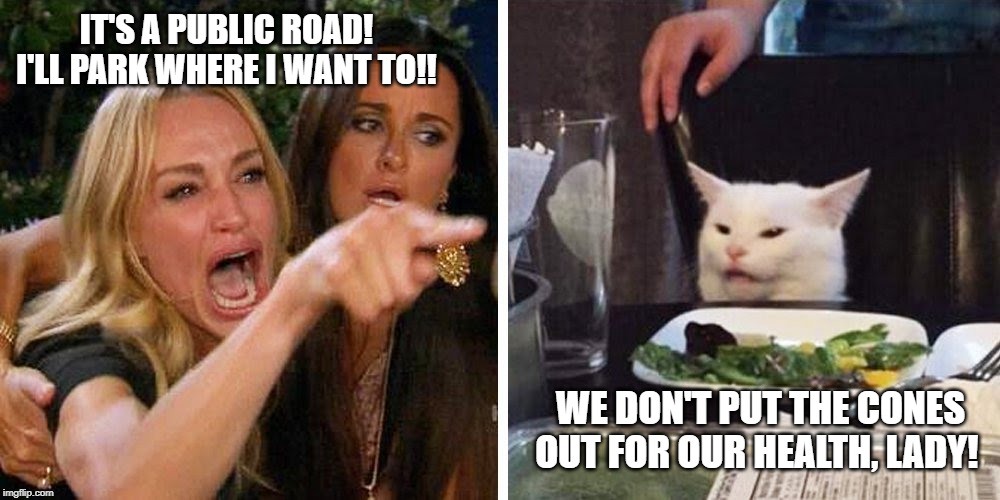 Smudge the cat | IT'S A PUBLIC ROAD! I'LL PARK WHERE I WANT TO!! WE DON'T PUT THE CONES OUT FOR OUR HEALTH, LADY! | image tagged in smudge the cat | made w/ Imgflip meme maker