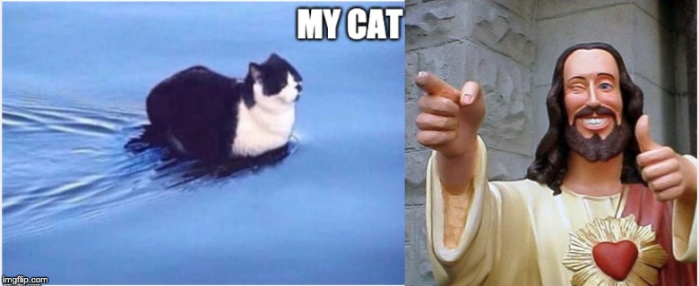 image tagged in cat,jesus,float,funny | made w/ Imgflip meme maker