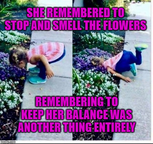 Stop and smell the flowers they said... |  SHE REMEMBERED TO STOP AND SMELL THE FLOWERS; REMEMBERING TO KEEP HER BALANCE WAS ANOTHER THING ENTIRELY | image tagged in flowers,memes,good morning flowers,smells,balance,remember | made w/ Imgflip meme maker