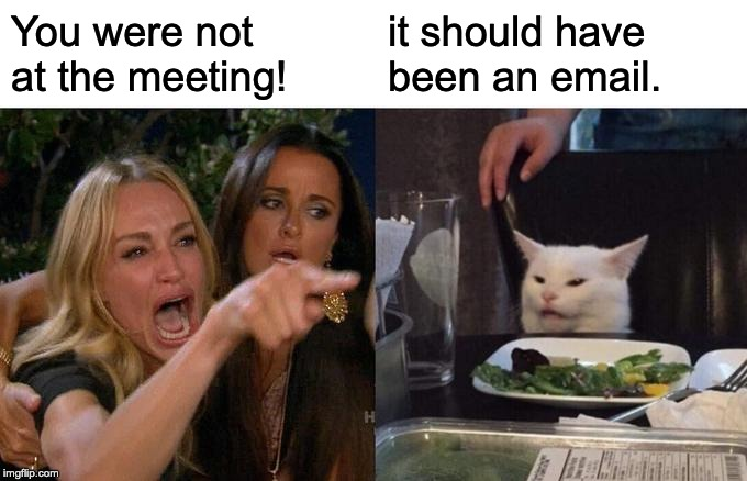 should have been an email | You were not at the meeting! it should have been an email. | image tagged in memes,woman yelling at cat,meeting,email | made w/ Imgflip meme maker