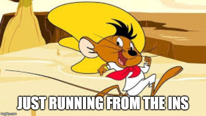 Ariba Ariba!!! | JUST RUNNING FROM THE INS | image tagged in speedy gonzales | made w/ Imgflip meme maker