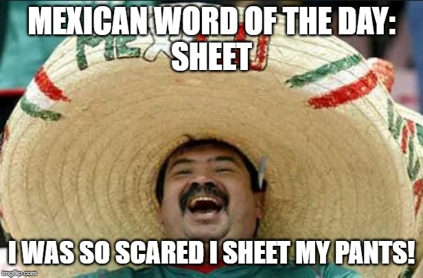 mexican word of the day | MEXICAN WORD OF THE DAY: SHEET I WAS SO SCARED I SHEET MY PANTS! | image tagged in mexican word of the day | made w/ Imgflip meme maker