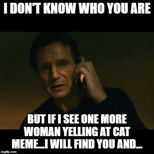Liam Neeson Taken | I DON'T KNOW WHO YOU ARE BUT IF I SEE ONE MORE WOMAN YELLING AT CAT MEME...I WILL FIND YOU AND... | image tagged in memes,liam neeson taken | made w/ Imgflip meme maker
