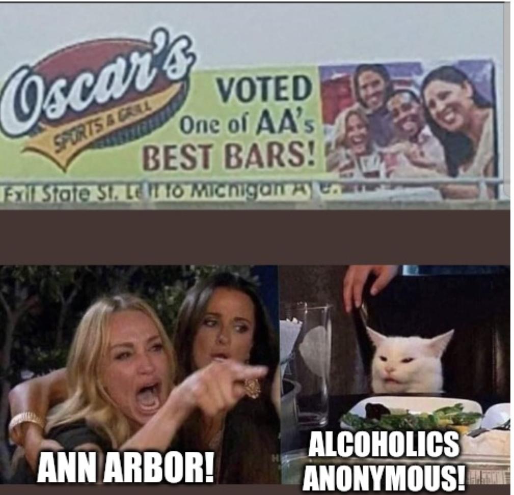 Lady Yelling At Cat Memes Imgflip