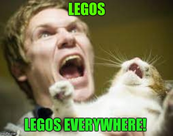 Legos everywhere | LEGOS LEGOS EVERYWHERE! | image tagged in funny legos,funny cat,step on a lego | made w/ Imgflip meme maker