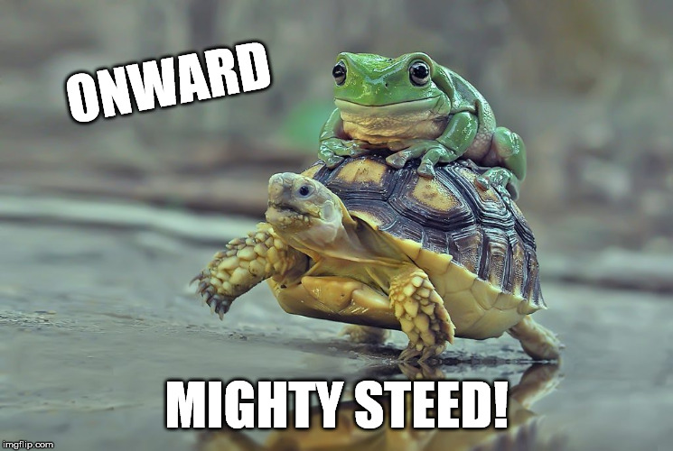 ONWARD MIGHTY STEED! | made w/ Imgflip meme maker