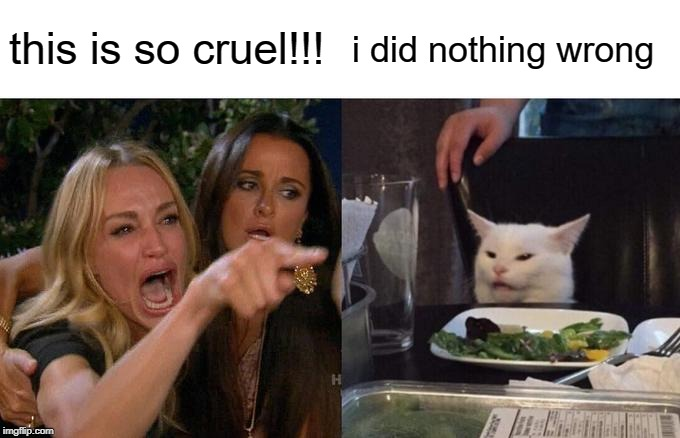 this is so cruel!!! i did nothing wrong | image tagged in memes,woman yelling at cat | made w/ Imgflip meme maker