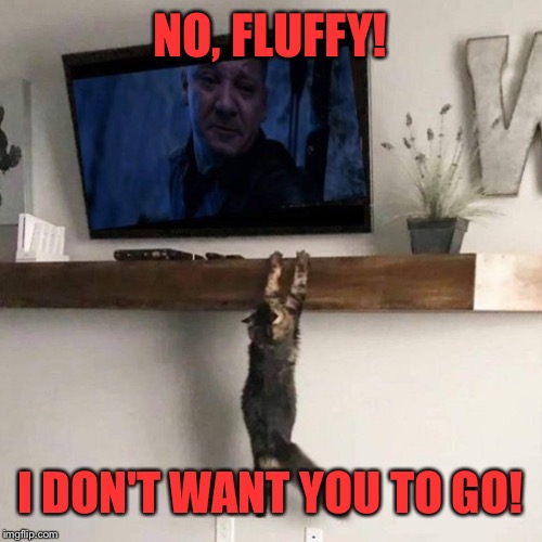 It's time for meow to go | NO, FLUFFY! I DON'T WANT YOU TO GO! | image tagged in avengers endgame,cats,soul stone | made w/ Imgflip meme maker