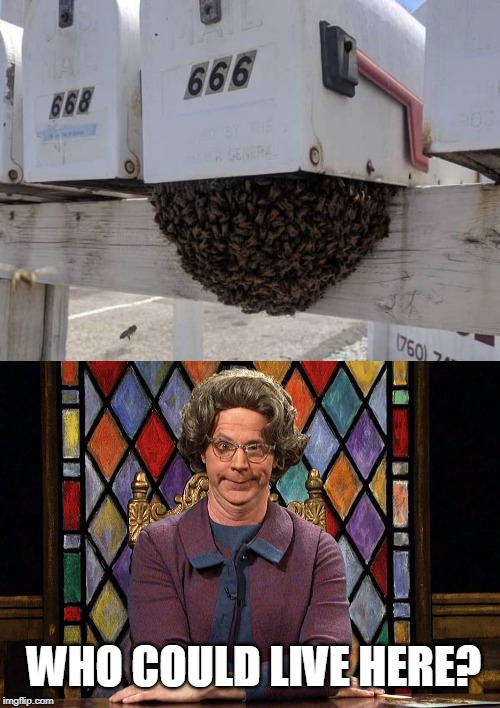 Who lives here? Like the swarm just had to gather there? |  WHO COULD LIVE HERE? | image tagged in the church lady,satan | made w/ Imgflip meme maker