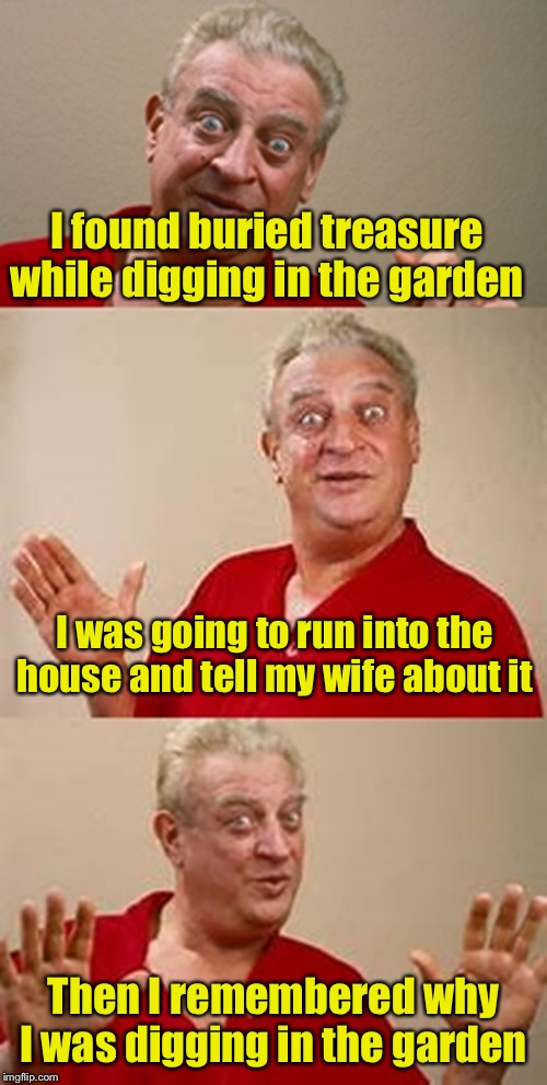 bad pun Dangerfield  |  I found buried treasure while digging in the garden; I was going to run into the house and tell my wife about it; Then I remembered why I was digging in the garden | image tagged in bad pun dangerfield | made w/ Imgflip meme maker