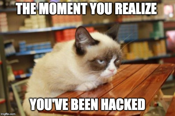 Grumpy Cat Table | THE MOMENT YOU REALIZE YOU'VE BEEN HACKED | image tagged in memes,grumpy cat table,grumpy cat | made w/ Imgflip meme maker