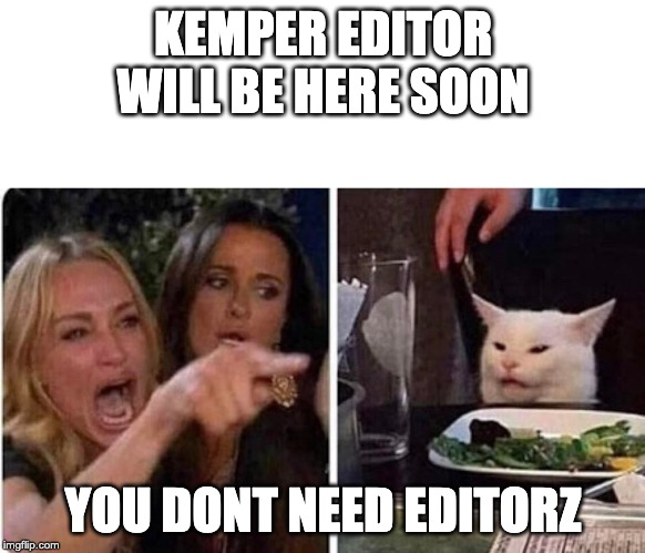 Lady screams at cat | KEMPER EDITOR WILL BE HERE SOON YOU DONT NEED EDITORZ | image tagged in lady screams at cat | made w/ Imgflip meme maker