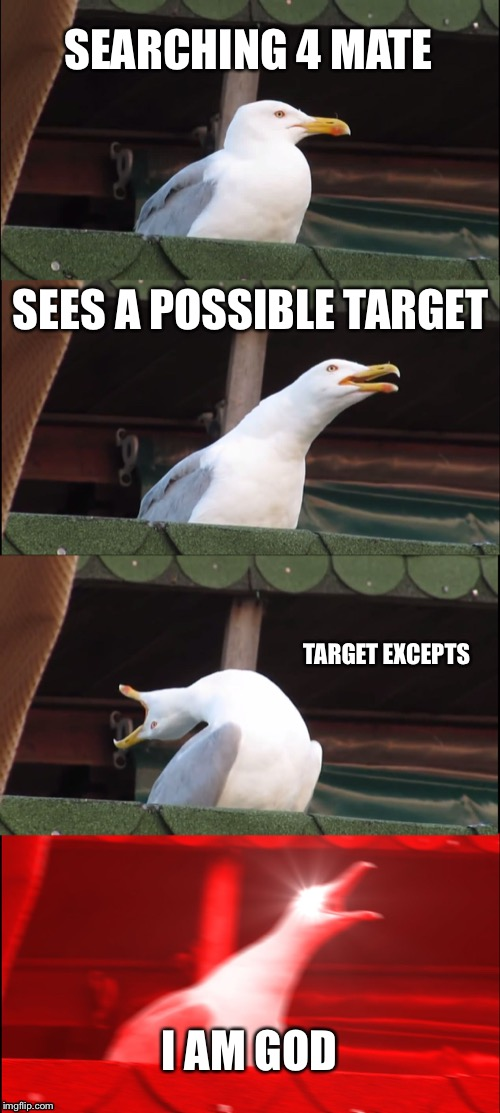 Inhaling Seagull | SEARCHING 4 MATE SEES A POSSIBLE TARGET TARGET EXCEPTS I AM GOD | image tagged in memes,inhaling seagull | made w/ Imgflip meme maker