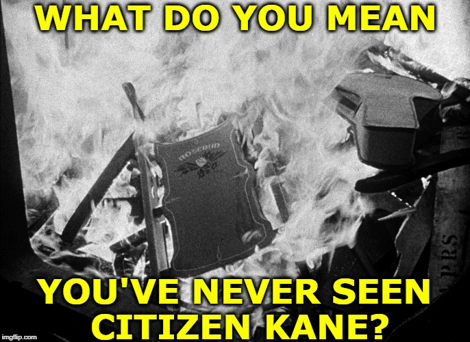 WHAT DO YOU MEAN; YOU'VE NEVER SEEN  CITIZEN KANE? | image tagged in rich,president,america,election,super rich | made w/ Imgflip meme maker