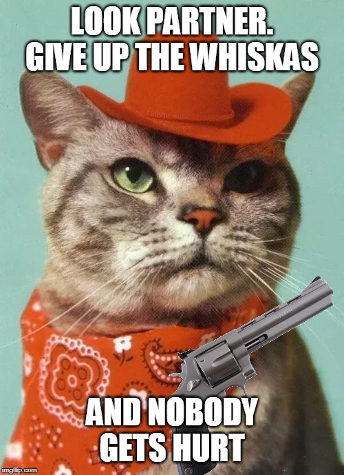 cowboy cat |  LOOK PARTNER. GIVE UP THE WHISKAS; AND NOBODY GETS HURT | image tagged in cowboy cat | made w/ Imgflip meme maker