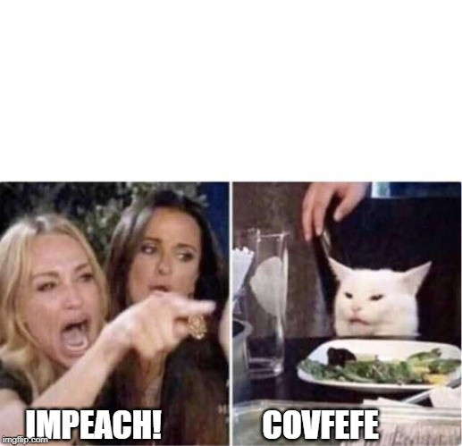 Real housewives screaming cat | IMPEACH!                COVFEFE | image tagged in real housewives screaming cat | made w/ Imgflip meme maker