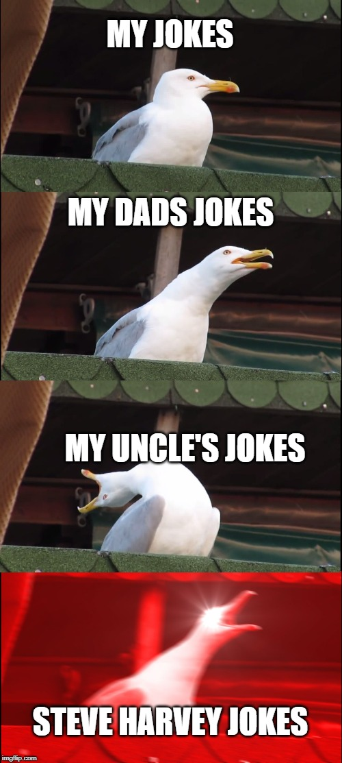 Inhaling Seagull Meme | MY JOKES MY DADS JOKES MY UNCLE'S JOKES STEVE HARVEY JOKES | image tagged in memes,inhaling seagull | made w/ Imgflip meme maker
