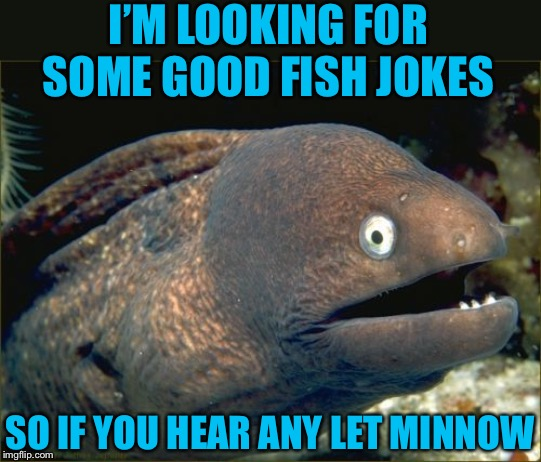 There are only two friends I ever go fishing with, Rod and Annette |  I'M LOOKING FOR SOME GOOD FISH JOKES; SO IF YOU HEAR ANY LET MINNOW | image tagged in memes,bad joke eel,fishing for upvotes,frontpage,triumph_9,confused dafuq jack sparrow what | made w/ Imgflip meme maker