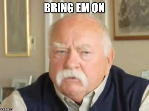 Wilford Brimley | BRING EM ON | image tagged in wilford brimley | made w/ Imgflip meme maker