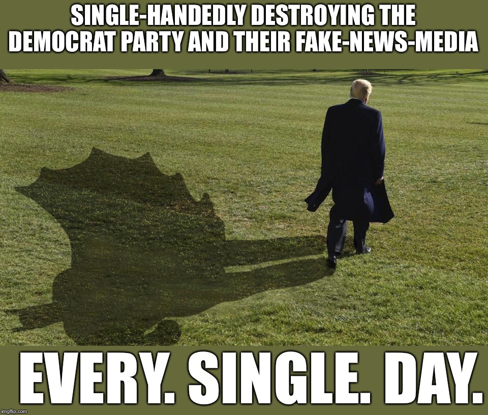 He never takes a day off , folks. | SINGLE-HANDEDLY DESTROYING THE DEMOCRAT PARTY AND THEIR FAKE-NEWS-MEDIA EVERY. SINGLE. DAY. | image tagged in maga | made w/ Imgflip meme maker